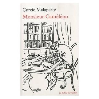 Monsieur Caméléon