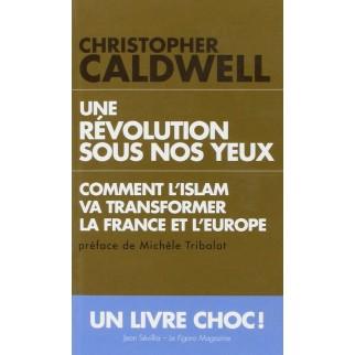 Une révolution sous nos yeux - Comment l'islam va transformer la France et l'Europe (poche)