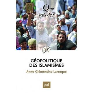 Géopolitique des islamismes - Que sais-je ?