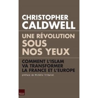 Une révolution sous nos yeux - Comment l'islam va transformer la France et l'Europe