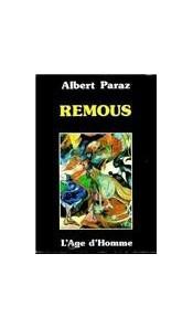 Remous