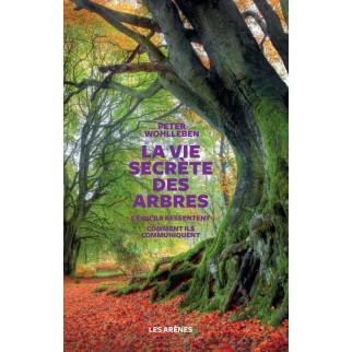 vie secrète des arbres