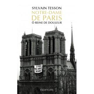 Tesson Notre-Dame de Paris